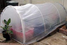 """cold frame from 1/2"""" PVC pipe, also can make a dome like a camping tent for a square cold frame."""