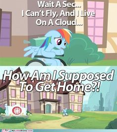 that's the first thing I wondered! << hahaha stay with Fluttershy? My Little Pony Comic, My Little Pony Drawing, My Little Pony Pictures, Mlp My Little Pony, My Little Pony Friendship, Filles Equestria, Haha Funny, Funny Memes, Funny Stuff