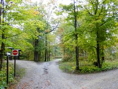 Six Mile Lake Provincial Park Ontario Canada - Autumn Ontario Camping, Country Roads, Canada, Autumn, Park, Fall, Parks