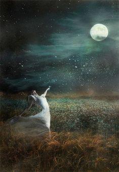 A Path to Spirit: Vintage Moon Collection! Moon Dance, Under The Moon, Sun Moon Stars, Moon Magic, Beautiful Moon, Moon Art, Nocturne, Oeuvre D'art, Full Moon