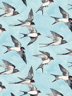 Buy Blue Sky Swallow Flight Art Print by micklyn. Barn Swallow, Swallow Bird, Vogel Illustration, Watercolor Illustration, Watercolor Painting, Bird Patterns, Bird Art, Geeks, Birds In Flight