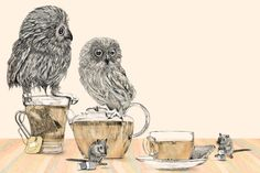 {Owls & Tea} a fabulous combination!