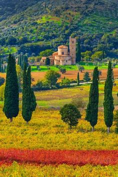 Toscana in autunno