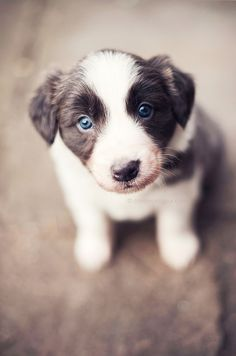 Those blue eyes <3