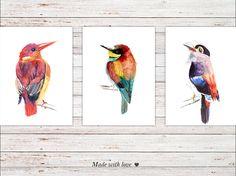 Tropical Bird Art Print Set Of 3 Decor