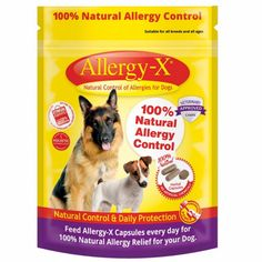 A Comprehensive Guide About Allergy Meds For Dogs Allergy Meds, Meds For Dogs, Natural Allergy Relief, Itchy Dog, Slippery Elm, Allergies, Pet Supplies, Your Dog, Herbalism