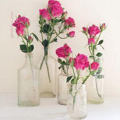 Vintage bottle & rose love. One of my fav mays to display rosebuds..