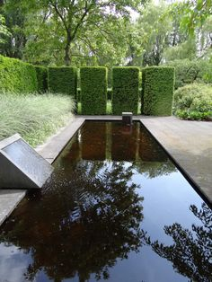 dd16b9c9604897 10 Garden Ideas to Steal from the Netherlands