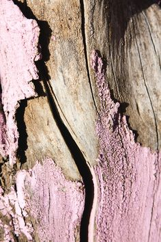 Pink Peeling Paint On Wood By Michael Chase Textures Patterns, Color Patterns, Art Grunge, Foto Macro, Peeling Paint, Color Stories, Natural Texture, Pink Texture, Wood Texture