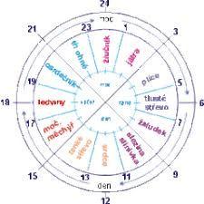 Výsledek obrázku pro orgánové hodiny Diagram, Chart