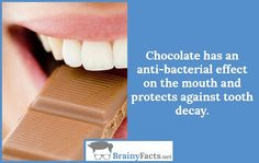 Chocolate Facts : Chocolate effect | did you know
