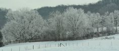 More snow in Rogersville.  March 2015.  Photo by:  Joyce Thomas.