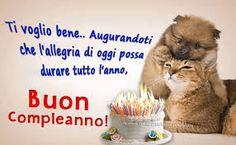 Oggi E Giorno Speciale E Il Tuo Compleanno Auguri Gatti