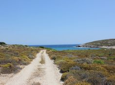 A rock thistle-lined path leads to a secluded beach.