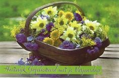 Kaartje met bloemen voor een jarige Plants, Paper Board, Plant, Planets