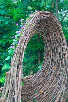 Bower Bird Sculpture arch with Morning Glory