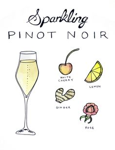 How One Red Grape Can Make Red, Rosé, and White Wine Sparkling Pinot (aka Blanc de Noirs): Pinot Noir in 4 different ways. #winemaking #wine101 #sparklingwine #Champagne