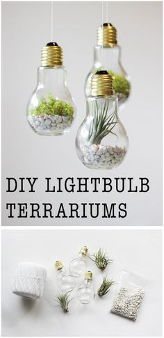 DIY Lightbulb Terrariums | 17 Easy DIY Home Decor Craft Projects