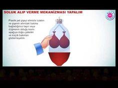AKCİĞER MODELİ- SOLUK ALIP VERME - YouTube