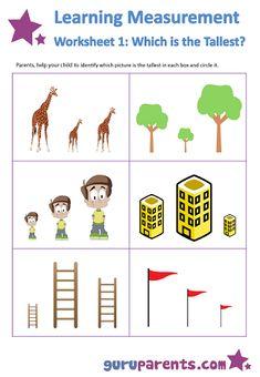 tall short worksheets kindergarten - Google Search