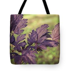 Actáea Cimicifúga Tote Bag featuring the photograph Favorite Purple by Anna… #AnnaMatveeva #Bag #Sunset #FineArtPhotography #ArtForHome #FineArtBag