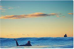 Enjoying the swells