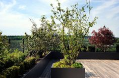 Luxembourg www.vereal.lu Jardin sur en toiture Roof garden