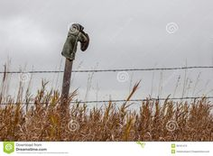boots  on fence posts photos | Cowboy Boot Hanging On A Fence Post Stock Photos - Image: 36161473