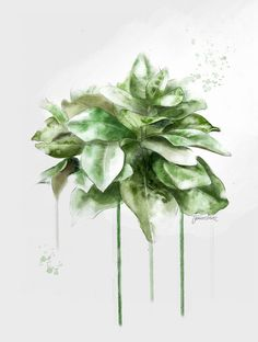 Green watercolor plant art print with a grey neutral background