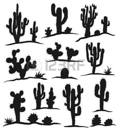 cactus art: Different types of cactus plants realistic decorative icons set isolated on white background. Cactus Silhouette, Silhouette Painting, Animal Silhouette, Types Of Cactus Plants, Shadow Painting, Rock Painting, Texas Quilt, Mountain Mural, Cartoon Butterfly