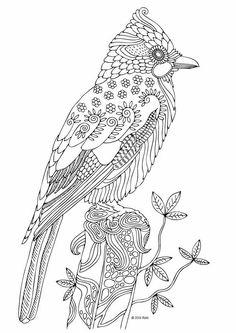 illustration by keiti - Animal Mandala Coloring Pages Owl
