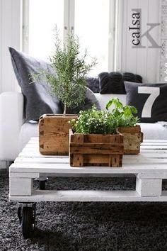 ☆Méchant Studio Blog: crates and plants