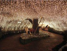 My dream wedding location