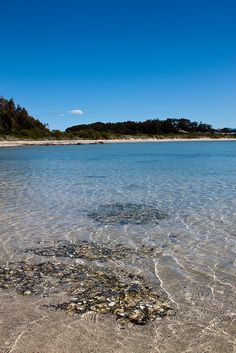Batemans Bay - NSW by Neil Banek, via Flickr