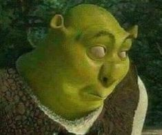 New Memes Para Contestar Shrek 62 Ideas Memes Shrek, Memes Humor, Shrek Funny, Meme Meme, Dog Memes, Funny Humor, Funny Profile Pictures, Funny Reaction Pictures, Funny Pictures
