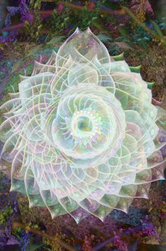 """""""I understand not the explicit mathematics of our spirit, only that we are pure as the light we travel within and our love, given freely, will save us."""" —Paul Matsumoto (Art: Sahasrara, 7th chakra) ..*"""