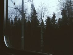 #metro#forest#silence#you#and#i