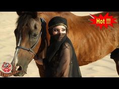 Horse Trainer Doing The Unthinkable *** Horseback Riding *** Animal Cros. Woman Riding Horse, Horse Girl, Princess Art, Arabian Nights, Horse Pictures, Horseback Riding, Spirit Animal, Festival Fashion, Animal Crossing