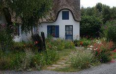Anglická zahrada .:. Realizace zahrad