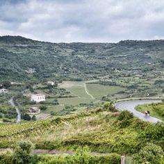 This is the journey of the bike travellers of Sardinia Grand Tour through the green countryside of the Planargia region. This is near Modolo, Oristano, which is the smallest town in #Sardinia  #italy #sardegna #biketravel #biketour #bicycletouring #cicloturismo #bike