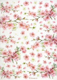 Rice Paper for Decoupage, Scrapbook Sheet, Craft Paper Flowering Peaches