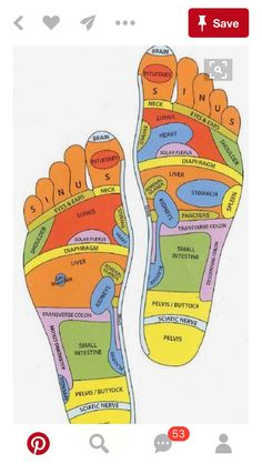 Acupuncture Holistic Healthcare Foot Reflexology Massage: A Healing Touch That Helps Prevent Many Disease Health Tips, Health And Wellness, Health And Beauty, Health Fitness, Fitness Hacks, Health Benefits, Massage Benefits, Health Care, Key Health