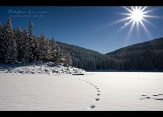 Frozen Black Lake