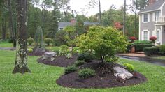 A bermed front yard planting island