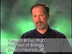 Creationism - Hear the Scientists Respond - YouTube