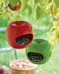 Apple bird feeders- Just repinned Jodie Nicholson's pin as that is how I roll.