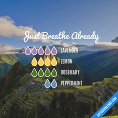 Just Breathe Already - Essential Oil Diffuser Blend