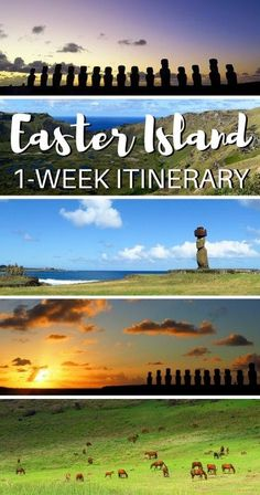 Exploring Rapa Nui: A One Week Easter Island Travel Itinerary! Now this is an exotic travel adventure worth of adding to your bucket list. Cool Places To Visit, Places To Travel, Travel Destinations, Easter Island Travel, Ecuador, Places Worth Visiting, Chili, South America Travel, Beautiful Islands