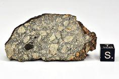 MPOD 160409 from Tucson Meteorites