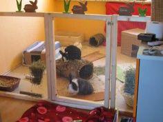 Indoor Rabbit Pen Idea!!!!! - BinkyBunny.com - House Rabbit Information Forum - BinkyBunny.com - BINKYBUNNY FORUMS - HABITATS AND TOYS